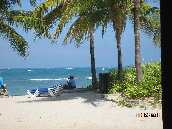 Grand Paradise Playa Dorada: View from the buffet restaurant