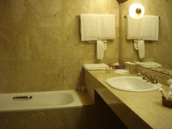 사파리 파크 호텔 이미지