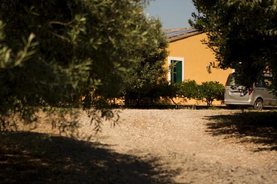 Agriturismo Marino: casa cipolla