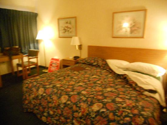Black Mountain Inn : Room