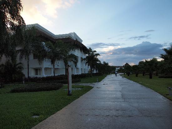 Zona jardin detras de los edificios