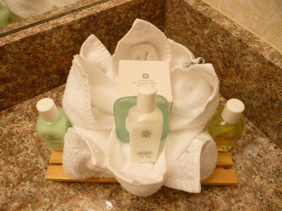 Biltmore Hotel & Suites: toiletries