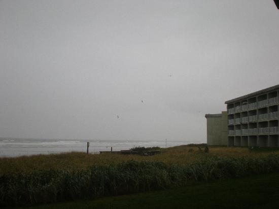 Driftwood Shores Resort & Conference Center: From the side