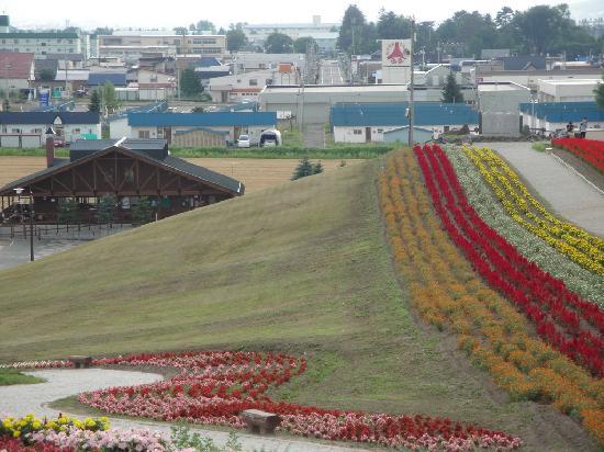 Hinode Park: 市區