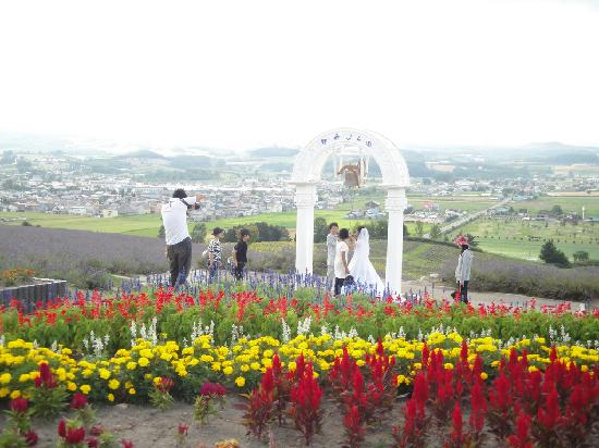 Hinode Park: 日の出山公園