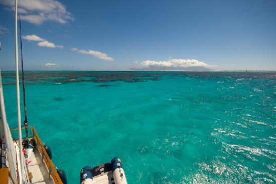 Nemo Cruises Day : spot sympa