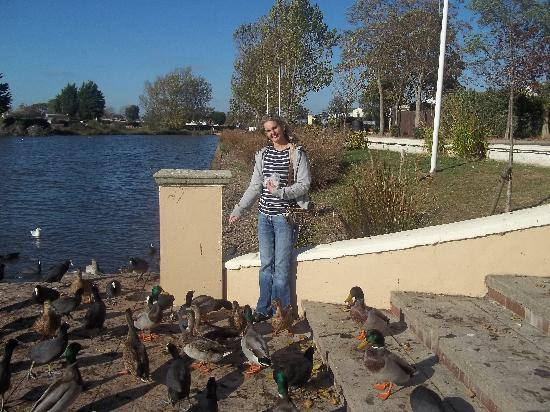 Хейлинг-Айленд, UK: Feeding the Ducks at Lakeside October 2012