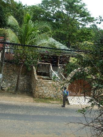 Coconut Tree West Bay: Street view of cabin