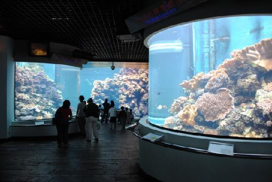 Taiwan National Aquarium Kenting Taiwan Picture Of