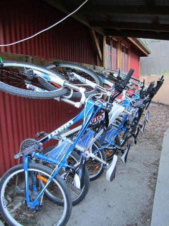 Wanaka Bakpaka: rent a bike from them