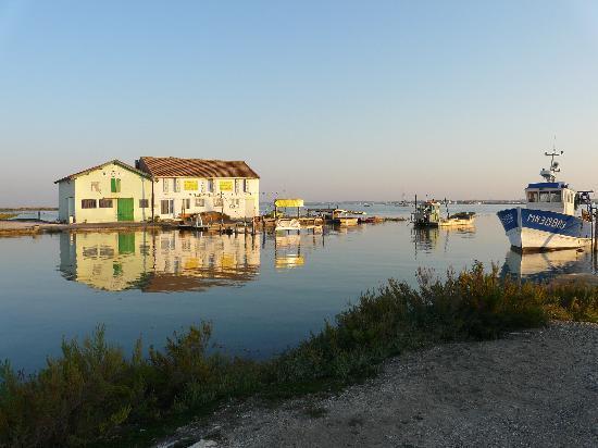 La Demeure du Port : Le port juste à côté à marée haute