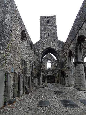 Sligo Abbey: Abbey