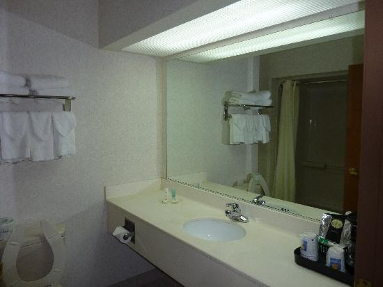 Comfort Inn & Suites : Bathroom is pretty old fashion but clean