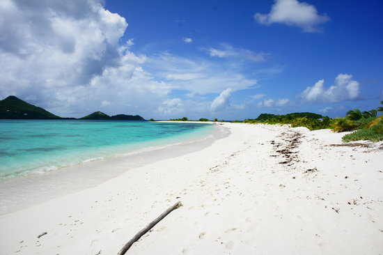 Ilha Carriacou, Grenada: Sandy Island - Pretty much the entire island in this pic