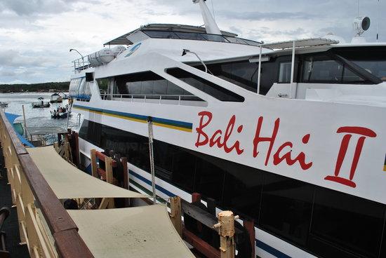 Bali Hai Cruises Denpasar 2020 All You Need To Know Before You Go With Photos Tripadvisor