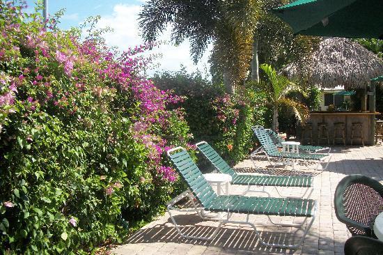 Casitas Coral Ridge : Courtyard