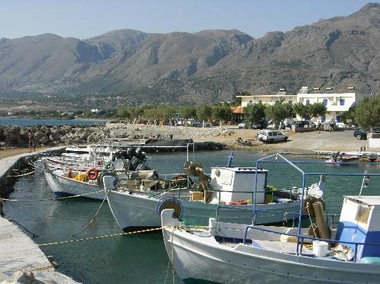 Flisvos Apartments: The harbour with the Taverna in the background