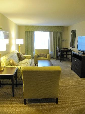 Hilton Garden Inn Eugene / Springfield: Meeting room/ Pull out couch