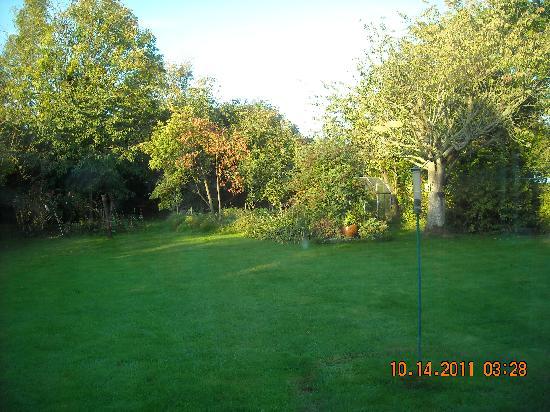 Southdown B&B / White Horse Walking Holidays: The garden