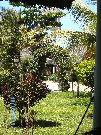 Diani Paradise Villas: Garten
