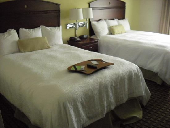 Hampton Inn & Suites Cleveland-Mentor: 2 bed room