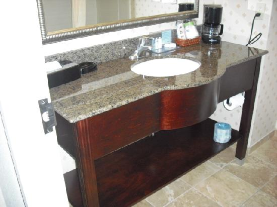 Hampton Inn & Suites Cleveland-Mentor: Bathroom Vanity