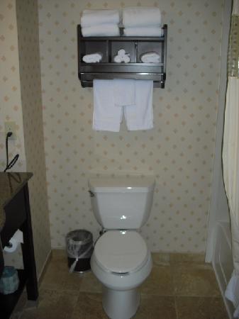 هامبتون إن آند سويتس كليفلاند منتور: Bathroom