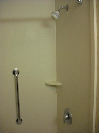 Hampton Inn & Suites Cleveland-Mentor: Shower