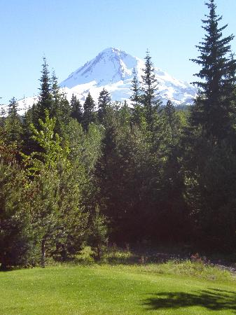 Cooper Spur Mountain Resort: view from cabin
