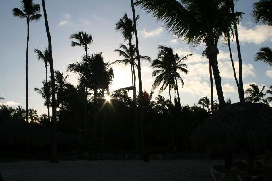 Iberostar  Bávaro Suites: Sunset