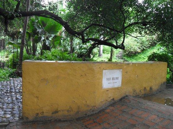 Quinta de San Pedro Alejandrino : Entrada