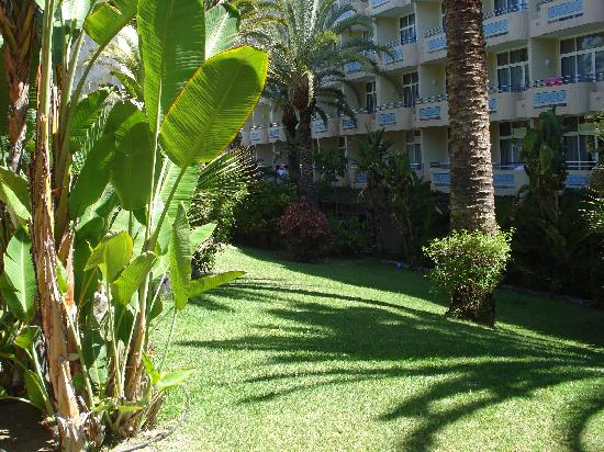 IFA Catarina Hotel: Jardim Hotel
