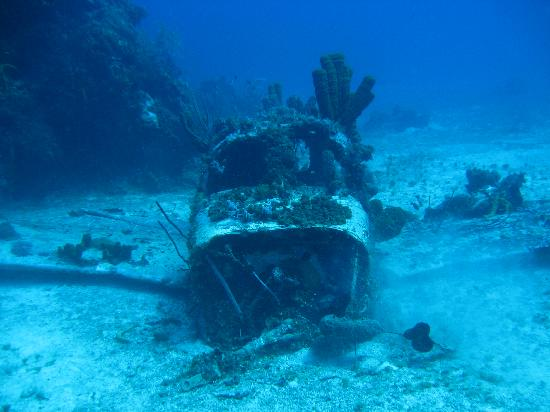 Negril, Jamaica: deep plane