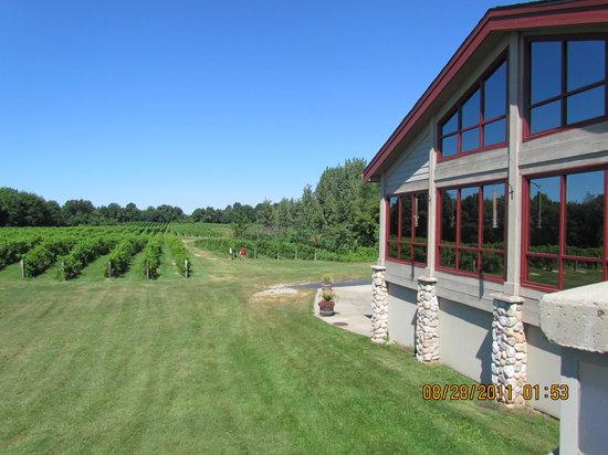 Fruitful Vine LLC: Tabor Hill