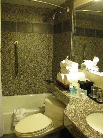 Wyndham Garden Austin: Bathroom