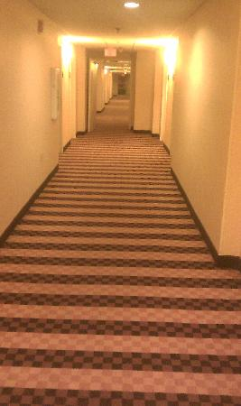 Doubletree Hotel Boston/Westborough: First floor hallway