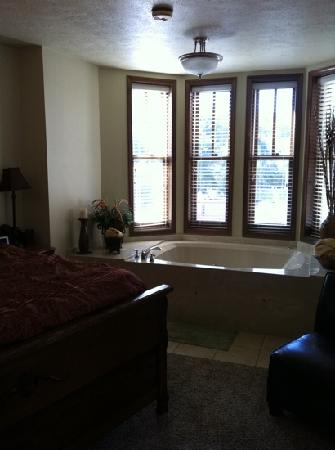 Flatiron Flats: penthouse suite