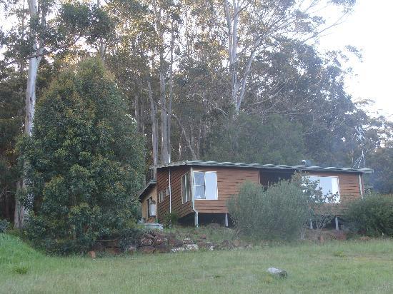 Bombina Cottages : Forrest Cottage