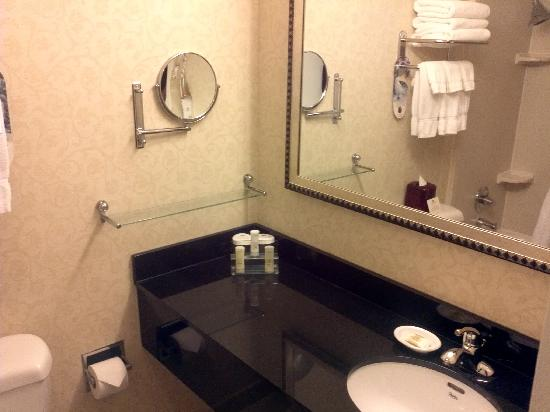Crowne Plaza Washington National Airport: bathroom