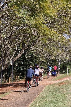 Bunyip Bike Tours: Easy riding