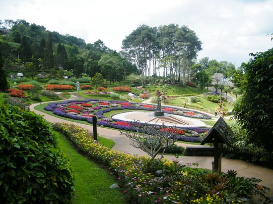 Mae Fa Luang, Tajlandia: The gardens in October