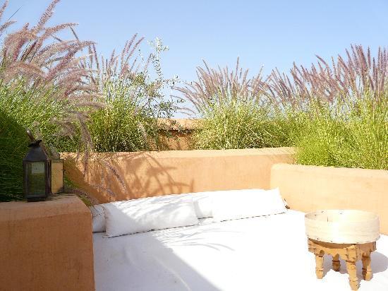 Zaouia 44: Terrace