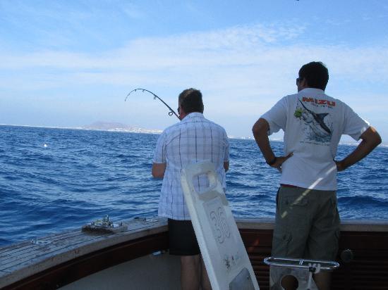 Lanzarote Fishing Club : snapper