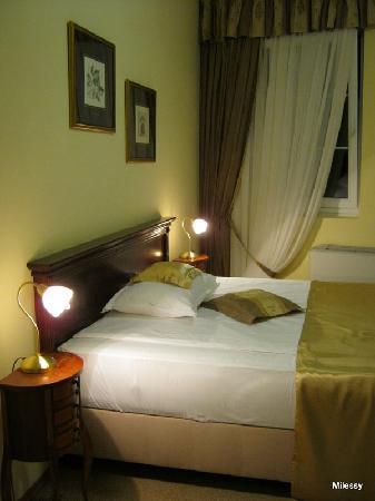 Garni Hotel Andric: Double room 1
