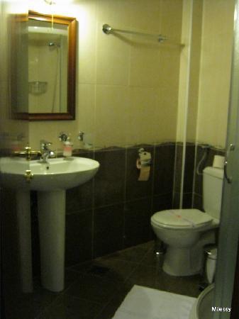 Garni Hotel Andric: Bathroom