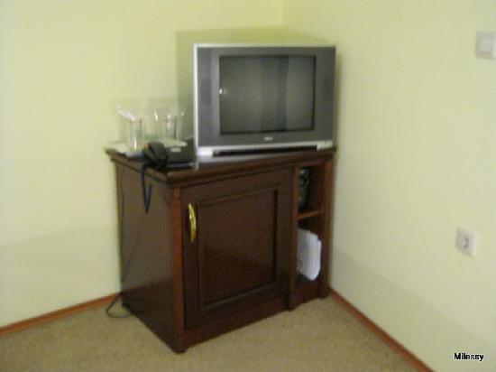Garni Hotel Andric: TV