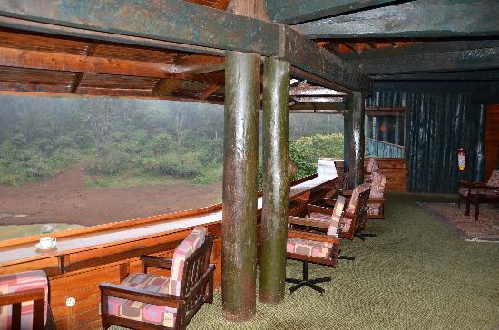Serena Mountain Lodge: Utsikten fra utsiktsverandaen