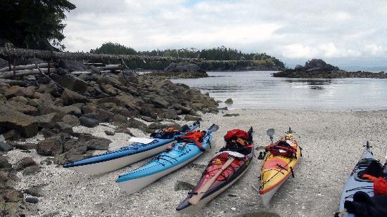 Majestic Ocean Kayaking: our kayaks