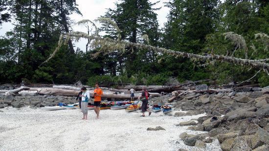 Majestic Ocean Kayaking: lunchtime