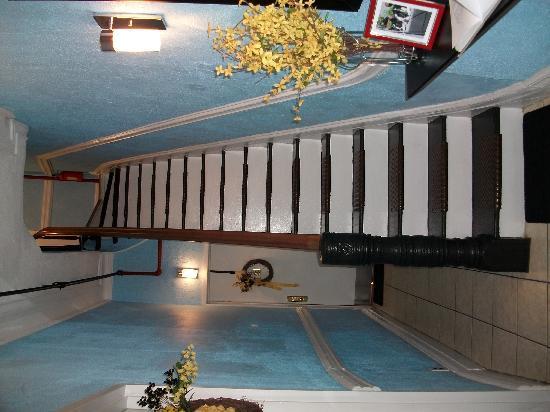 Bubba and Bean (BB) Lodges: las escaleras de acceso a las demas habitaciones